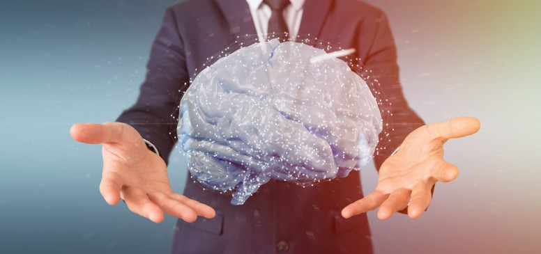 6 Essential Tips on Incorporating Neuroscience in Web Design