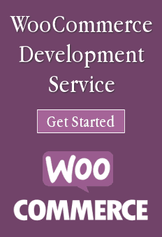 WooCommerce Development Service