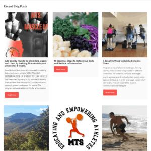Web Design Portfolio Mink Training