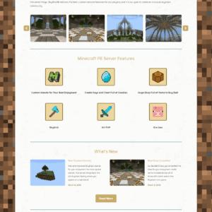 Web Design Portfolio SkyBlocMc