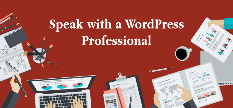WordPress Consulting Service