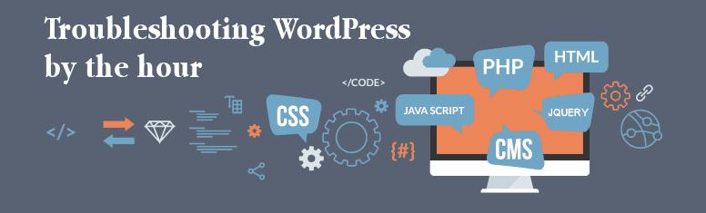 WordPress Fix It Service