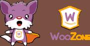 WooZone Amazon Affiliate Website